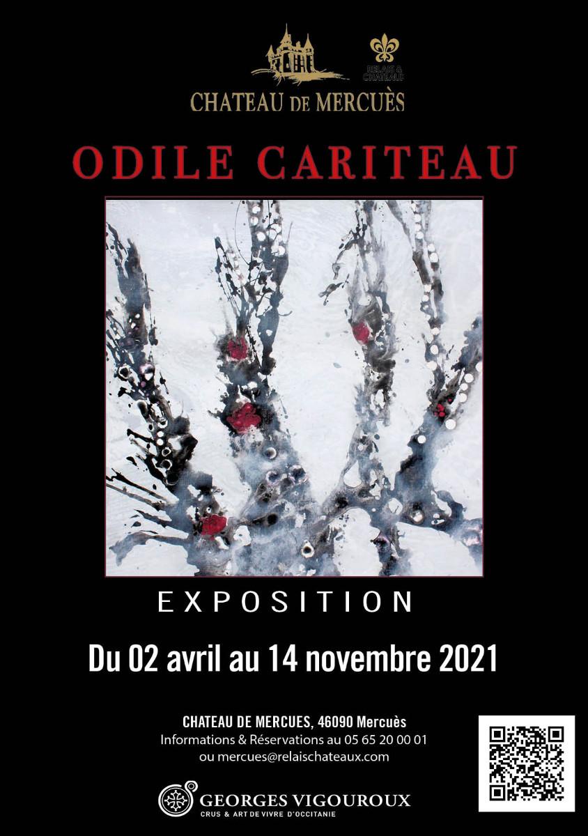 ODILE CARITEAU sur le site d'ARTactif