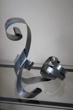 Cygne sur le site d'ARTactif