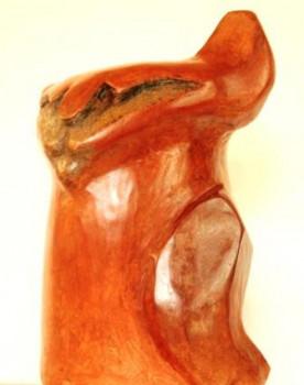 chat roux sur le site d'ARTactif