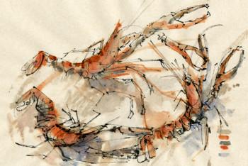 langoustines sur le site d'ARTactif