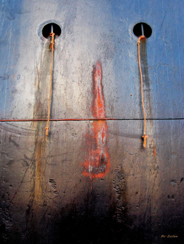 Bateau Tableau photographique clown marin sur le site d'ARTactif