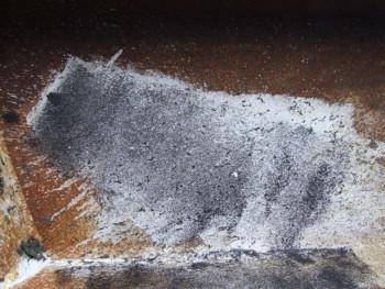 Toro de puerto sur le site d'ARTactif