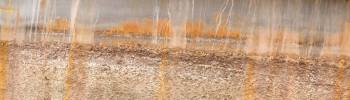Canal à l'automne sur le site d'ARTactif