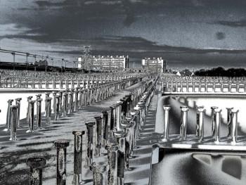 Scorffbridge tri Pont des indes sur le site d'ARTactif