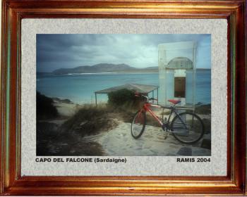 Italie, l'île d'Asina en Sardaigne 2004 sur le site d'ARTactif
