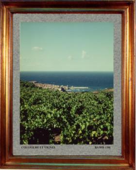 Catalogne nord, Collioure vignes et mer 1981 sur le site d'ARTactif