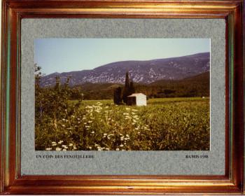 Catalogne nord, un coin des Fenouilledes 1988 sur le site d'ARTactif