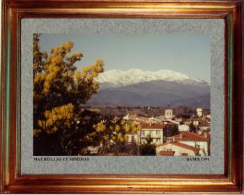 Catalogne nord, Maureillas et mimosas 1994 sur le site d'ARTactif