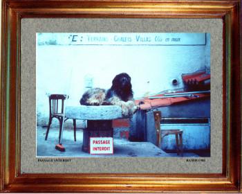 1983 Passage interdit sur le site d'ARTactif