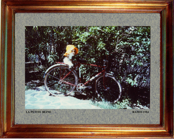 1984 La petite reine sur le site d'ARTactif