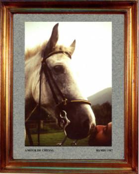 1987 Un amour de cheval sur le site d'ARTactif