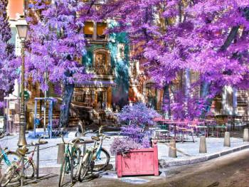 Montpellier 4 sur le site d'ARTactif