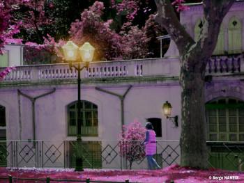 Pink Montpellier sur le site d'ARTactif