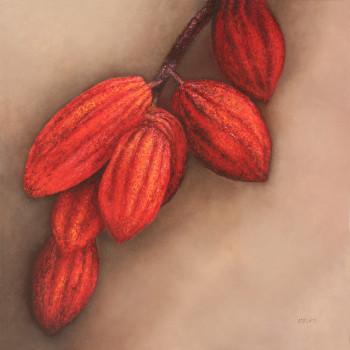Cacao sur son arbre sur le site d'ARTactif
