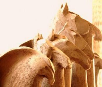 les chevaux sur le site d'ARTactif