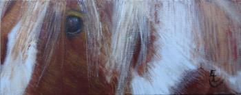 Dans l'oeil de Zoria sur le site d'ARTactif