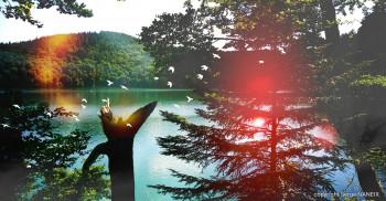 Lac Pavin 04 sur le site d'ARTactif