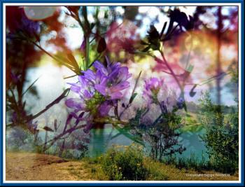 Surimpression florale sur le site d'ARTactif