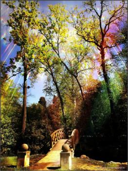 Magie Image 15 sur le site d'ARTactif