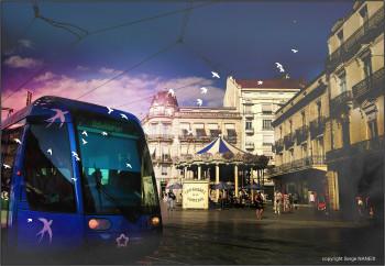 Tram hirondelles sur le site d'ARTactif