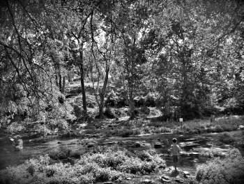 La rivièree sur le site d'ARTactif
