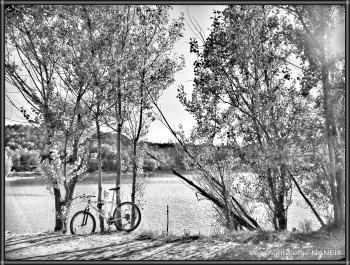 Balade au lac sur le site d'ARTactif
