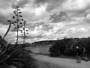 Le lac 6 sur le site d'ARTactif