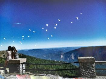 Mont Aigoual 1 sur le site d'ARTactif