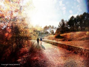 Balade au lac 2 sur le site d'ARTactif