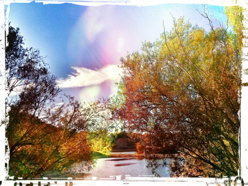 Balade au lac 3 sur le site d'ARTactif