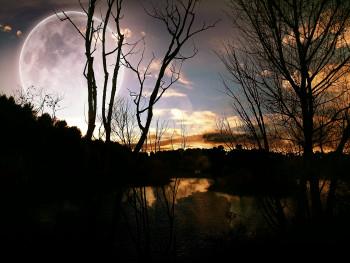 Clair de lune sur le site d'ARTactif