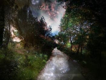 La route enchantée sur le site d'ARTactif