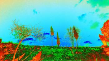 Nature numérique sur le site d'ARTactif