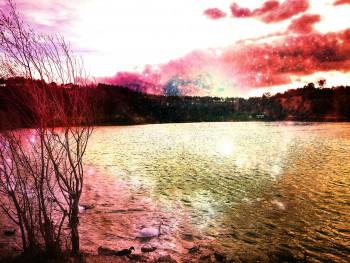 Le lac 19 sur le site d'ARTactif