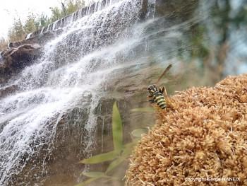 L'eau de la cascade sur le site d'ARTactif