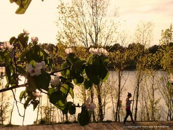 Lake story 2 sur le site d'ARTactif