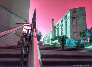 Nuit rose sur le site d'ARTactif