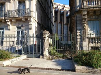 City dog sur le site d'ARTactif