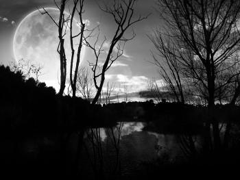 Black and white moon sur le site d'ARTactif