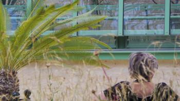 Pause au jardin tropical sur le site d'ARTactif