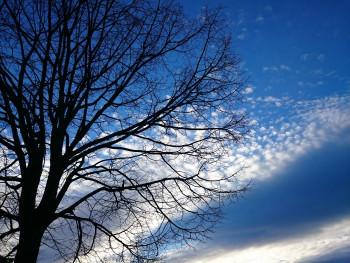 Ciel d'hiver sur le site d'ARTactif