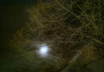 Les ténèbres sur le site d'ARTactif