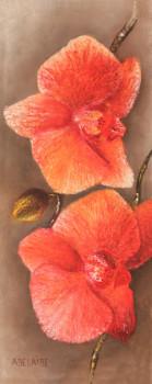 """""""Orchidée n°3 sur le site d'ARTactif"""