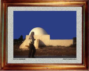 Tunisie; Retour au foyer 2004 sur le site d'ARTactif