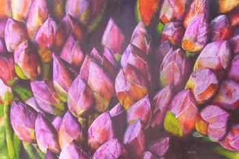 Fleurs de lotus en boutons sur le site d'ARTactif