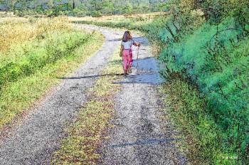 La petite route sur le site d'ARTactif