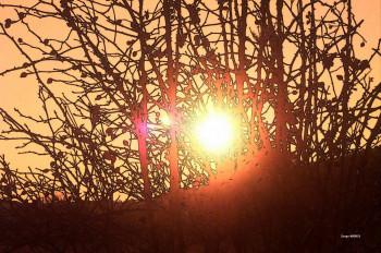 Entre Soleil sur le site d'ARTactif