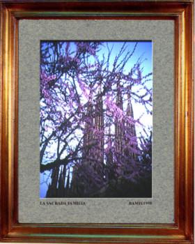 Catalogne sud, Sagrada Femilia de Barcelone 1998 sur le site d'ARTactif